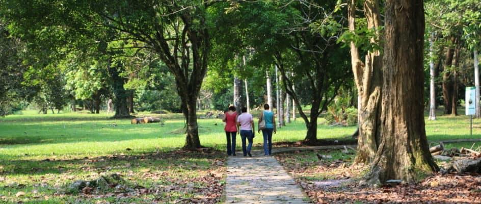 Lancetilla Botanical Gardens