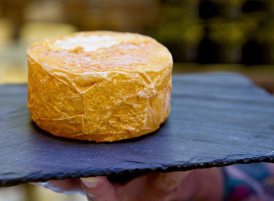 Gourmet Cheese in Copan