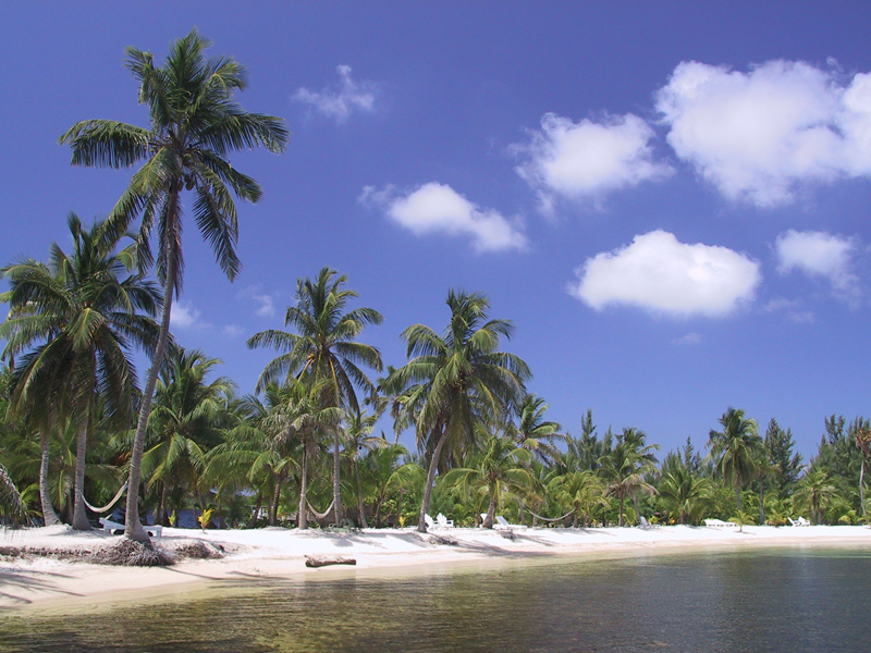 The Story of William Walker and Roatan