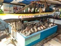 Corozal Eateries