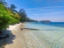 Bay Islands of Honduras Covid-19 Free